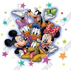 Disney world Family Vacation T Shirt Iron on Transfer Decal #18