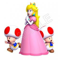 Super Mario Bros. Princess Peach and Toads T Shirt Iron on Transfer Decal #29