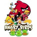 Angry Birds T Shirt Iron on Transfer Decal #69 by www.shopironons.com