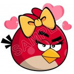 Angry Birds T Shirt Iron on Transfer Decal #93 by www.shopironons.com