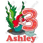 Ariel The Little Mermaid Birthday Personalized Custom T Shirt Iron on Transfer Decal #26 by www.shopironons.com