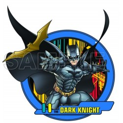 Batman dark Knight T Shirt Iron on Transfer Decal #6