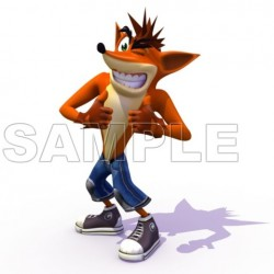 Crash Bandicoot T Shirt Iron on Transfer Decal #2