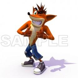 Crash Bandicoot T Shirt Iron on Transfer Decal #2