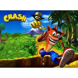 Crash Bandicoot T Shirt Iron on Transfer Decal #5