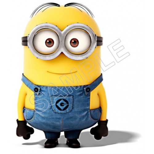 Despicable Me Minion T Shirt Iron on Transfer Decal #62 by www.shopironons.com