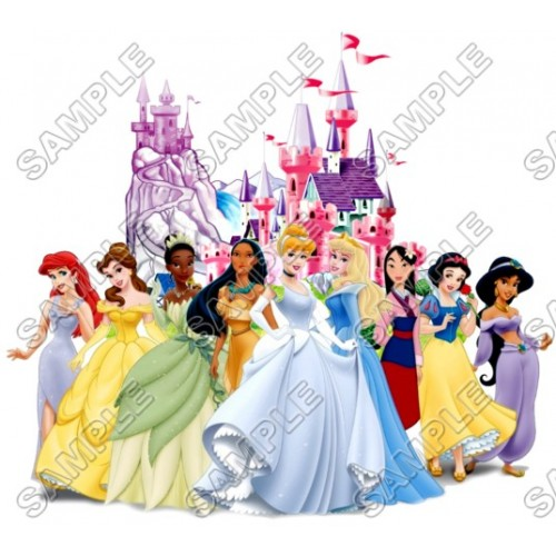 Disney Princess Castle T Shirt Iron on Transfer Decal #16 by www.shopironons.com