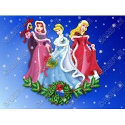 Disney princess Christmas T Shirt Iron on Transfer Decal #56