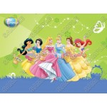 Disney Princess Easter T Shirt Iron on Transfer Decal #30 by www.shopironons.com