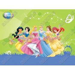 Disney Princess Easter T Shirt Iron on Transfer Decal #30