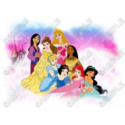 Disney Princess T Shirt Iron on Transfer Decal #14