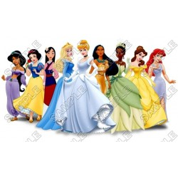 Disney Princess T Shirt Iron on Transfer Decal #15