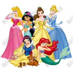 Disney Princess T Shirt Iron on Transfer Decal #18