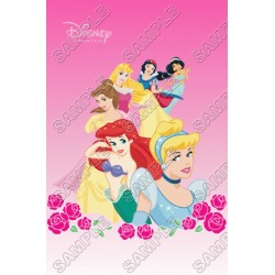 Disney Princess T Shirt Iron on Transfer Decal #26