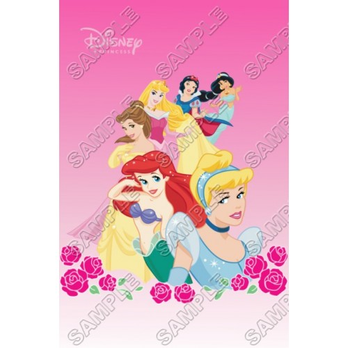 Disney Princess T Shirt Iron on Transfer Decal #26 by www.shopironons.com