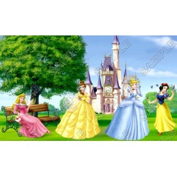 Disney Princess T Shirt Iron on Transfer Decal #27