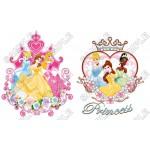 Disney Princess T Shirt Iron on Transfer Decal #33 by www.shopironons.com
