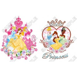 Disney Princess T Shirt Iron on Transfer Decal #33