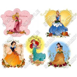 Disney Princess T Shirt Iron on Transfer Decal #34