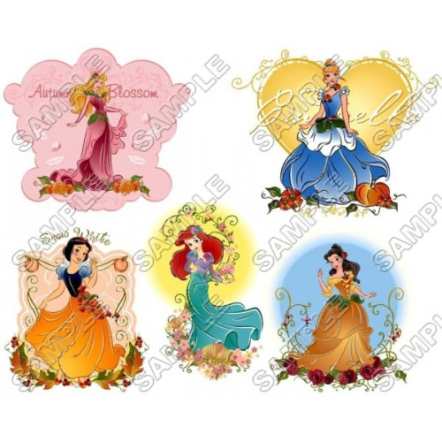 Disney Princess T Shirt Iron on Transfer Decal #34 by www.shopironons.com