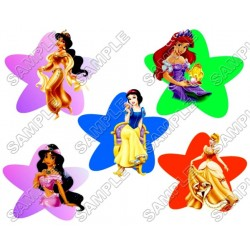Disney Princess T Shirt Iron on Transfer Decal #35