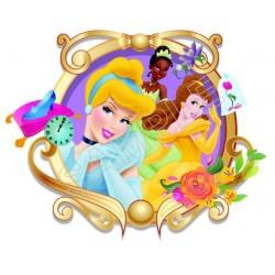 Disney Princess T Shirt Iron on Transfer Decal #4