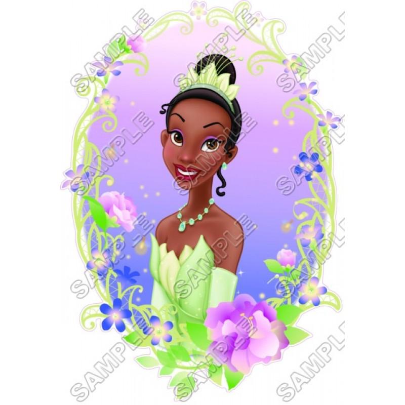 Disney Princess Tiana T Shirt Iron On Transfer Decal 8