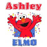 Elmo Personalized Custom T Shirt Iron on Transfer Decal #73 by www.shopironons.com