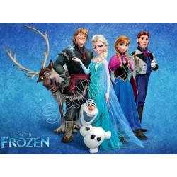 Frozen Elsa Anna Olaf T Shirt Iron on Transfer Decal #77