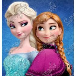 Frozen Elsa Anna T Shirt Iron on Transfer Decal #46