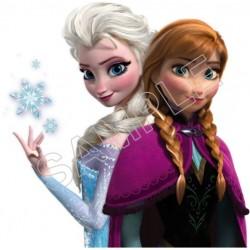 Frozen Elsa Anna T Shirt Iron on Transfer Decal #73