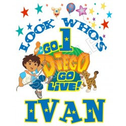 Go Diego Go Birthday Personalized Custom T Shirt Iron on Transfer Decal #80