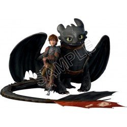 How to Train Your Dragon T Shirt Iron on Transfer Decal #5
