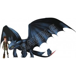 How to Train Your Dragon T Shirt Iron on Transfer Decal #6