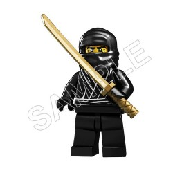 Lego Game Ninja T Shirt Iron on Transfer Decal #18