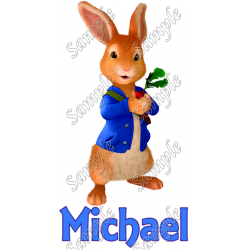 Peter Rabbit Personalized Custom T Shirt Iron on Transfer Decal #2