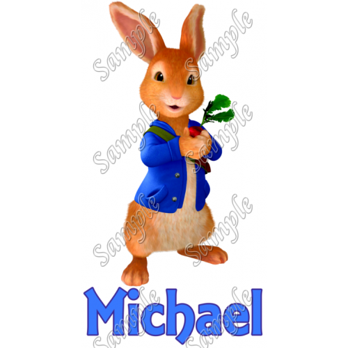 Peter Rabbit Personalized Custom T Shirt Iron on Transfer Decal #2 by www.shopironons.com