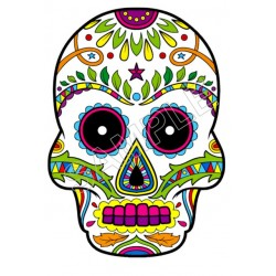 Mexican Sugar Skull T Shirt Iron on Transfer Decal #27
