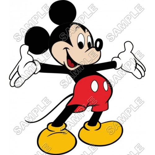 Mickey Mouse T Shirt Iron on Transfer Decal #19 by www.shopironons.com