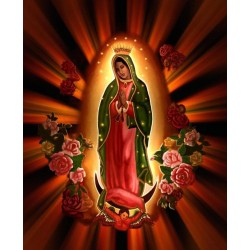 Our Lady of Guadalupe T Shirt Iron on Transfer Decal #2