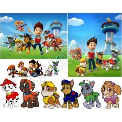 Paw Patrol T Shirt Iron on Transfer Decal #79
