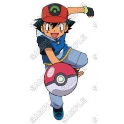 Pokemon T Shirt Iron on Transfer Decal #3