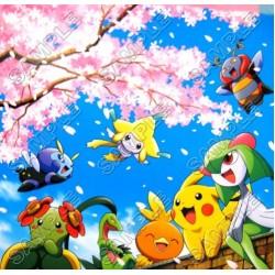 Pokemon T Shirt Iron on Transfer Decal #31