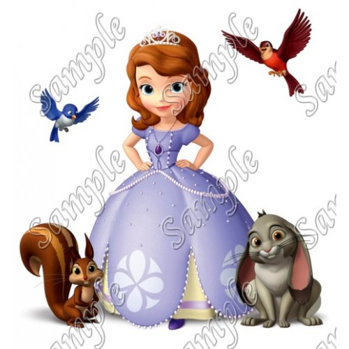 Sofia the First Princess T Shirt Iron on Transfer Decal #15 by www.shopironons.com