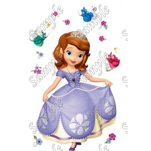 Sofia the First Princess T Shirt Iron on Transfer Decal #16 by www.shopironons.com