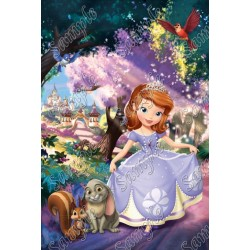 Sofia the First Princess T Shirt Iron on Transfer Decal #8