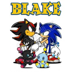 Sonic Personalized Custom T Shirt Iron on Transfer Decal #112