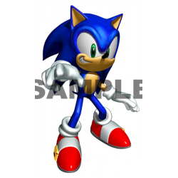 Sonic T Shirt Iron on Transfer Decal #26