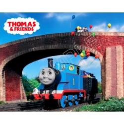 Thomas the Train T Shirt Iron on Transfer Decal #11
