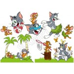 Tom and Jerry T Shirt Iron on Transfer Decal #56 by www.shopironons.com